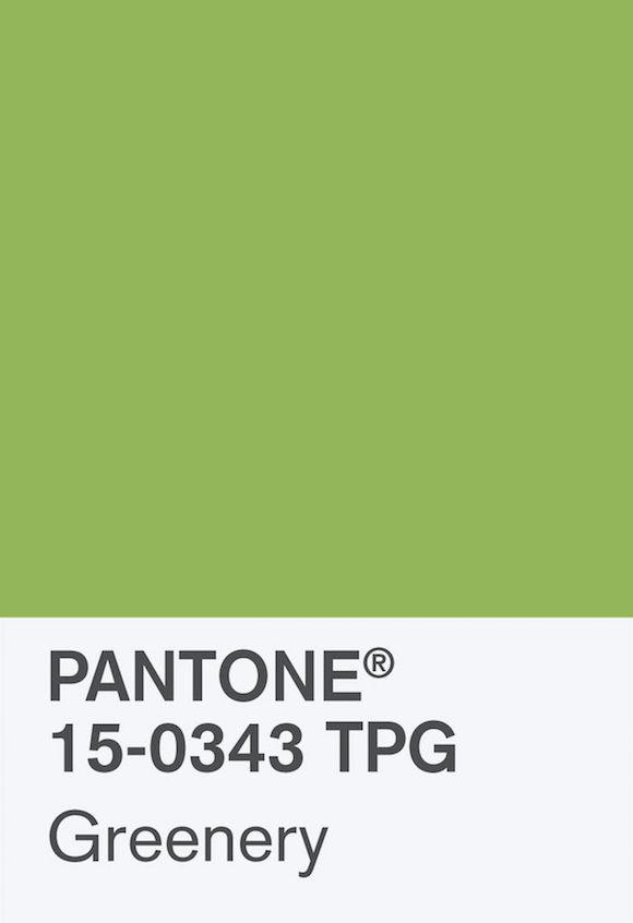 Cor de 2017 Greenery Pantone 02